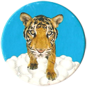 Magic Box Int. > Head First Mad Caps 137-Tiger-(blue-bg).