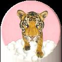Magic Box Int. > Head First Mad Caps 137-Tiger-(pink-bg).