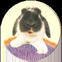 Magic Box Int. > Head First Mad Caps 149-Rabbit-(light-yellow-bg).