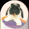 Magic Box Int. > Head First Mad Caps 149-Rabbit-(pale-bg).