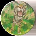 Magic Box Int. > Head First Mad Caps 158-Tiger.