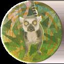 Magic Box Int. > Head First Mad Caps 166-Lemur.