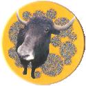 Magic Box Int. > Head First Mad Caps 204-Cattle.