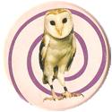 Magic Box Int. > Head First Mad Caps 216-Owl-(pale-bg).