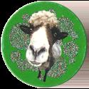Magic Box Int. > Head First Mad Caps 235-Sheep.