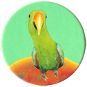 Magic Box Int. > Head First Mad Caps 236-Parrot-(green-bg).