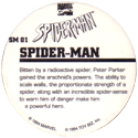 Marvel Comics - Toybiz > Spiderman SM-01-Spider-man-(back).