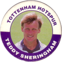 Merlin Magicaps > Premier League 95 240-Tottenham-Hotspur---Teddy-Sheringham.