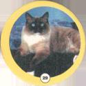 Сотка 029-Cat.