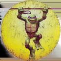 Черепашки Ниндзя 01-Donatello.