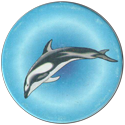 American Caps 199-Dolphin.