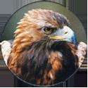 Cadbury Birds of Prey Flip-em's 01-Golden-Eagle.