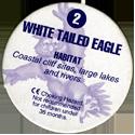 Cadbury Birds of Prey Flip-em's 02-White-Tailed-Eagle-(back).