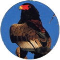 Cadbury Birds of Prey Flip-em's 03-Bateleur-Eagle.