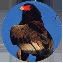 Cadbury Birds of Prey Flip-em's 03-Bateleur-Eagle.