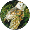 Cadbury Birds of Prey Flip-em's 04-Barn-Owl.