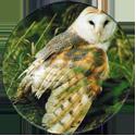 Cadbury Birds of Prey Flip-em's 04-Barn-Owl.