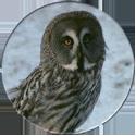 Cadbury Birds of Prey Flip-em's 12-Great-Grey-Owl.