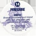 Cadbury Birds of Prey Flip-em's 14-Peregrine-(back).