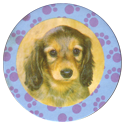 Collector Caps 082-Lovely-Puppies.