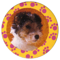 Collector Caps 085-Lovely-Puppies.