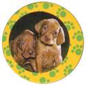 Collector Caps 086-Lovely-Puppies.