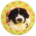 Collector Caps 088-Lovely-Puppies.