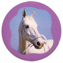Collector Caps 092-Horses.