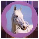 Collector Caps 092-Horses.