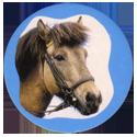 Collector Caps 094-Horses.
