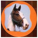 Collector Caps 095-Horses.