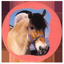 Collector Caps 097-Horses.