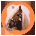 Collector Caps 098-Horses.