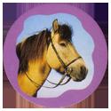Collector Caps 099-Horses.
