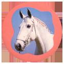 Collector Caps 100-Horses.