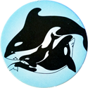 Free Willy 2 Orcas-graphic.