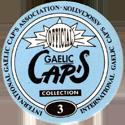 Gaelic Cap's Back.