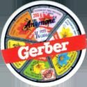 Gerber 03-Anemone.