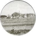 Groot-Ammers > Black & White 06-Farmland.