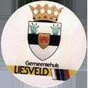 Groot-Ammers > Black & White 59back-Gemeentehuis-Liesveld.