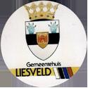 Groot-Ammers > Colour 21back-Gemeentehuis-Liesveld.