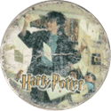 Harry Potter Caps 03-Harry-Potter.