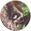 1995 New Hampshire Collector Series > Series 2 White Mountains Wildlife Collection Raccoon.