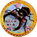 MushiKing The Guardians of the Forest 21-帕氏紅背鍬形蟲-Parry-Stag-beetle.