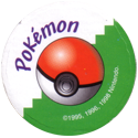 Pokémon Master Trainer Back-Green.