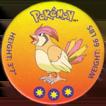 Pokémon (small) 017-Pidgeotto.