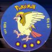 Pokémon (small) 018-Pidgeot.