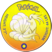 Pokémon (small) 038-Ninetails.