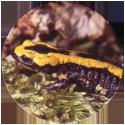 Spicy Caps Salamandre-tachetée-・-Vuursalamander.