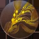 Splatch 07-Kelp.